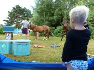 Camping new forest august 2013 049